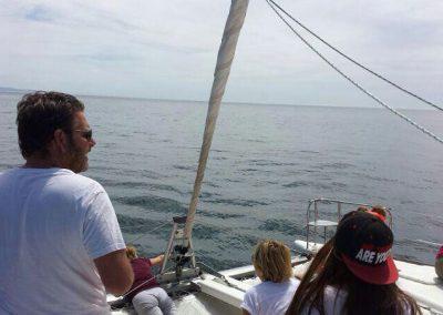 Estepona Catamaran & Speedboat Charter